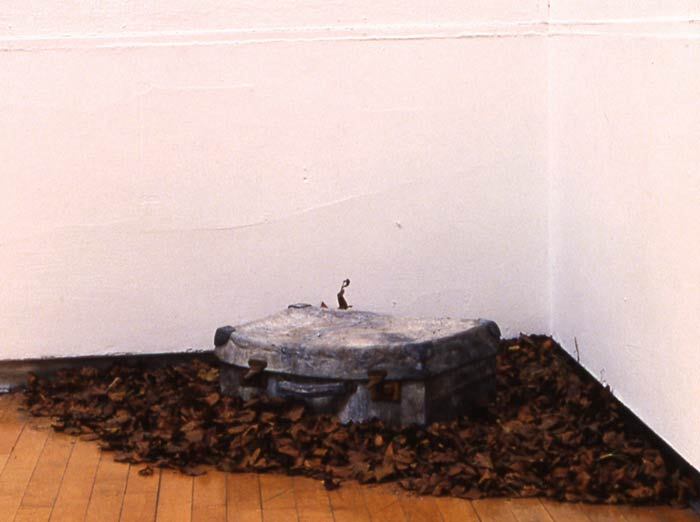 sculpture by Adam Reynolds - a lead suitcase surrounded by leaves